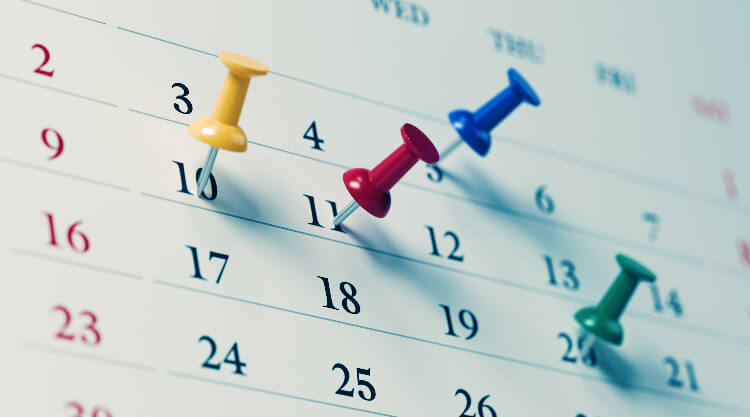 calendar with push pins